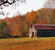 Autumn in Kentucky by Danny Close
