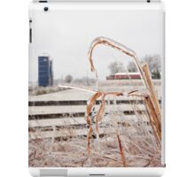 Frozen Farm iPad Case/Skin