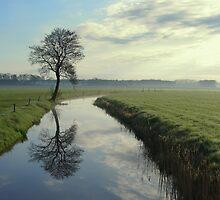 Tree by the Stream by ienemien