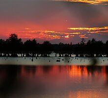 Bussey Brake Sunset by KSkinner