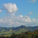 The Hills Of Waihi by Robert Abraham
