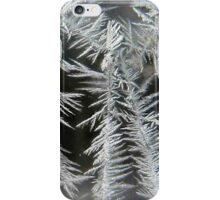 Frosty Feathers of Ice iPhone Case/Skin