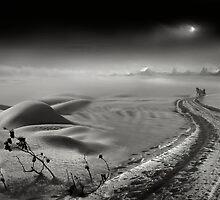 Snow Way by Igor Zenin