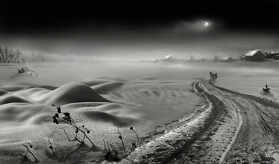 Snow Way by Igor Zenin