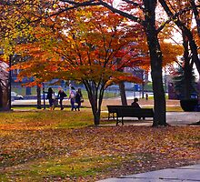 Campus Scenic by Richard VanWart