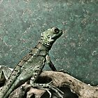 Paranoid Lizard by Danielle Golding