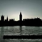 Parliament by Danielle Golding