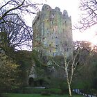 Blarney Castle by shanmclean