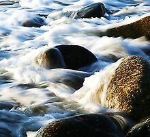 Shag Bay Nova Scotia by HighHeadArtwork