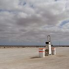 The Nullarbor by Elena Martinello