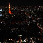 Tokyo by night from Mori Building by iansimages
