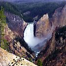 Grand Canyon of the Yellowstone by Kathy Weaver