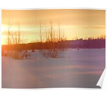 Shades of a winter sunset Poster