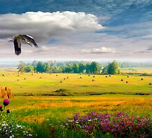 Golden Valley by Igor Zenin