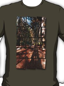 Indian summer forest trail | landscape photography T-Shirt
