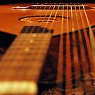Strings by Nori Bucci