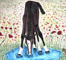 Poppies 'N' Puddles  by AngieDavies