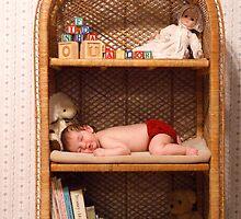 In the Nursery 2 by Dawn Palmerley