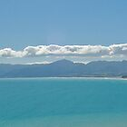 Palliser Bay by Andy  Christopherson