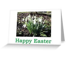 SnowDrops (Easter) Greeting Card