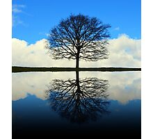 Reflective Beauty Photographic Print
