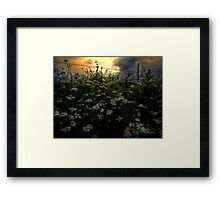 The Early Glow Framed Print
