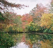 autumn reflections by stelfox1