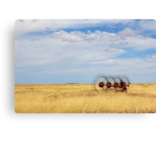 Hay rake - (Farm equipment) Location: Free state, South Africa Canvas Print