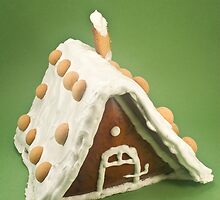 Gingerbread house by Tim Scott