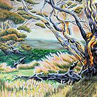 Snowgums  by Penny Edwardes