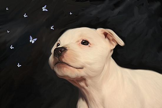 Staffy puppy!! by Cazzie Cathcart