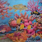 Sulawesi Reef by HDPotwin