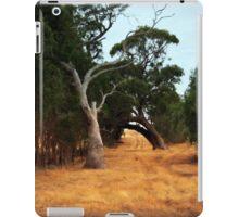Rustic Road iPad Case/Skin