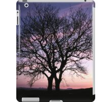 Two Trees embracing iPad Case/Skin