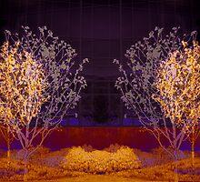 Winter Mix Brilliance by digitalmidge