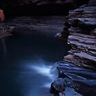 Kermits Pool by Stephen  Williams