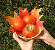 Autumnal fruits by daffodil