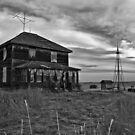 Lost In The Prairies.. I Will Find My Way Home (B&W) by Mindy McGregor