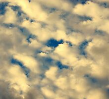 Cotton Ball Clouds Above by davesdigis