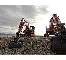 Orange Giants At The Beach,,,,,,,,,,, Photographic Print