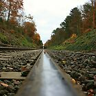 Railroad Symmetry  by JenTheDuck