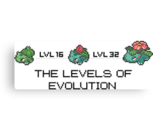 The Levels Of Evolution #001-#003 Canvas Print