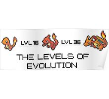 The Levels Of Evolution #004-#006 Poster
