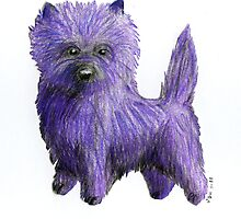 Purple Cairn Terrier by RedPoodle