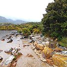 Lake Dove, Cradle Mountain by bevanimage