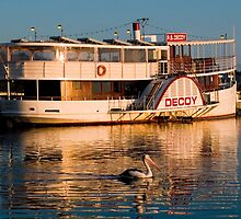 Paddle Steamer Decoy by Adrian Lord