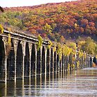 Rockville Bridge in fall 2008 by mstinak