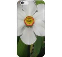 The face of spring iPhone Case/Skin
