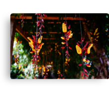 hanging garden Canvas Print