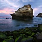 Bird Rock by jswolfphoto
